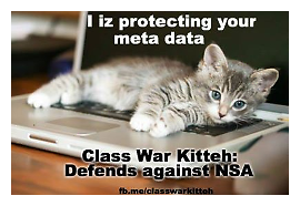 War-Kitteh protects your data!